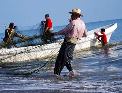 El comercio mundial de pescado alcanza nuevo récord