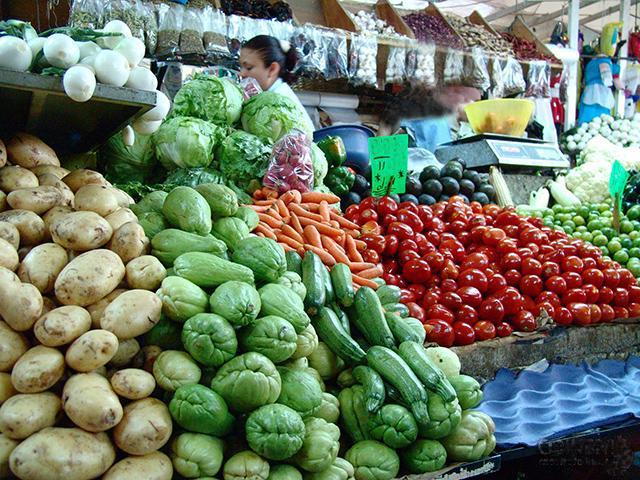 Las exportaciones de agroalimentación y pesca crecen un 5%