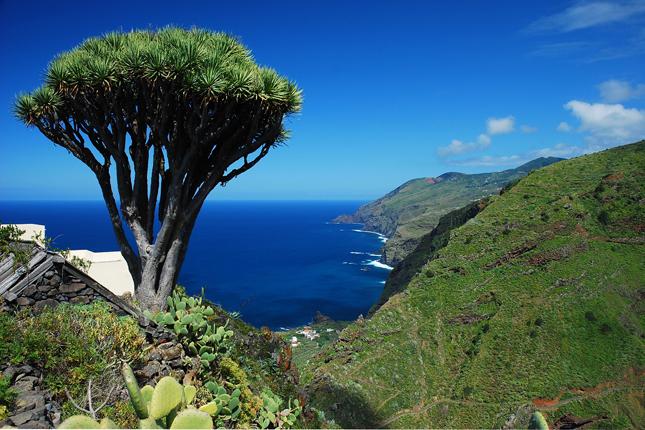 El Cabildo de La Palma destina 145.000 euros a la creación de empresas