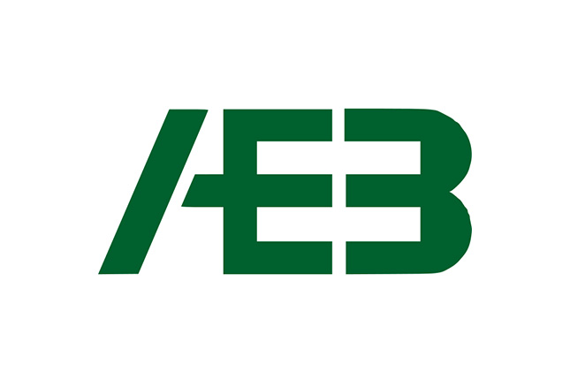 Villasante renuncia a su cargo de secretario general de la AEB