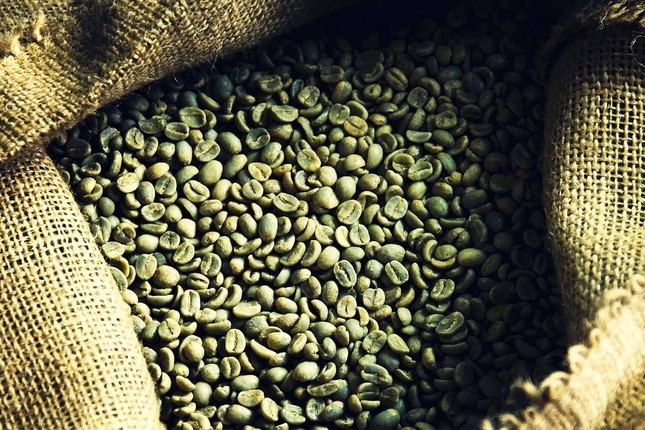 La producción de café en Colombia sube un 8%