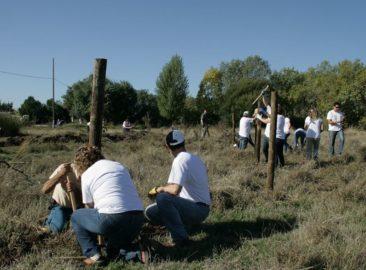 Fundación Repsol organiza jornadas de voluntariado para la integración