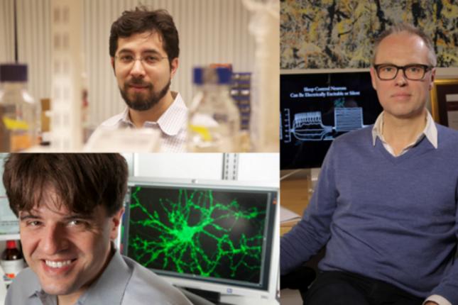BBVA premia a los impulsores de la optogenética