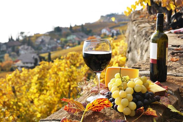 Las exportaciones españolas de vino aumentan un 8,3%