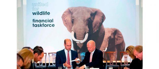 Banco Santander se une al Grupo Financiero Internacional contra el tráfico de especies salvajes