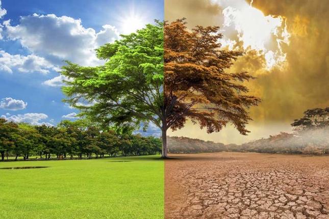 El cambio climático y los enfrentamientos políticos son los principales riesgos de 2020